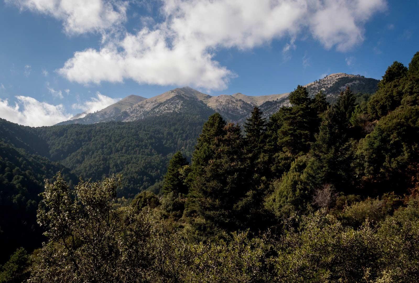 Day 8 : Allagonia - Kontovounia mountain walking tour - Alagonia km 15.