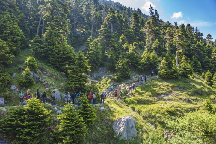 Day 4: Prionia - Enipeas gorge - Litochoro